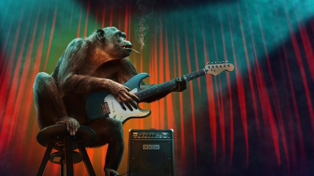 music, concert, monkey